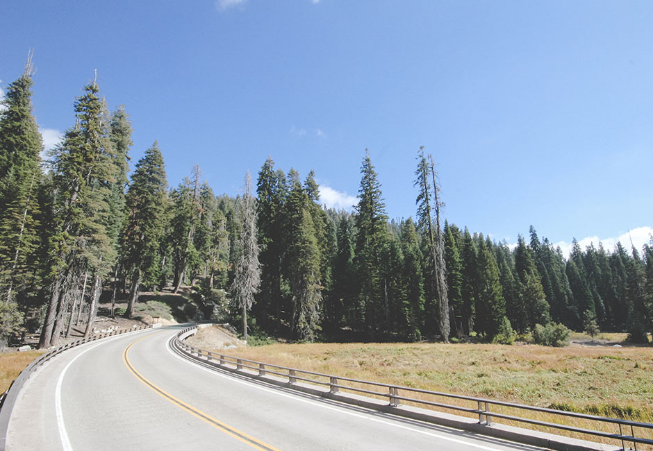 sequoia_route_2