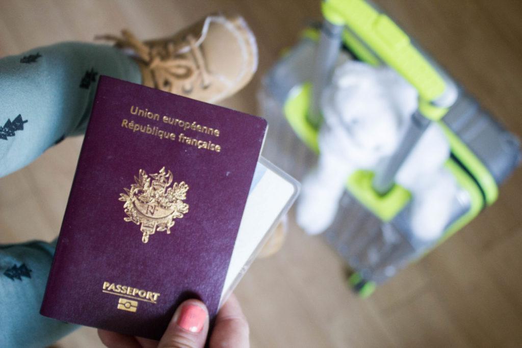 carte identité bébé pour avion